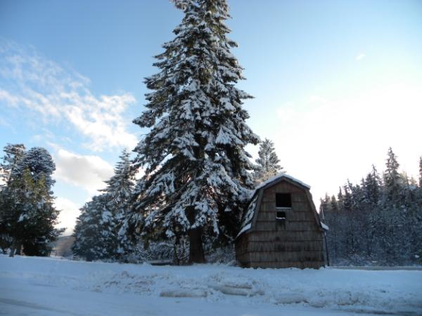 Winter in Clallam Bay                                                                    Photo Credit: Kelli Wilson