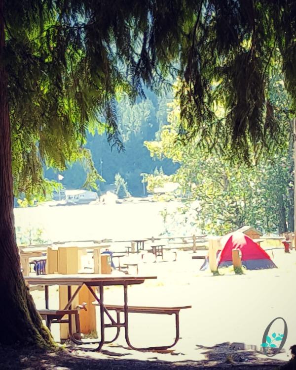 Log-Cabin-Resort-Campground-View