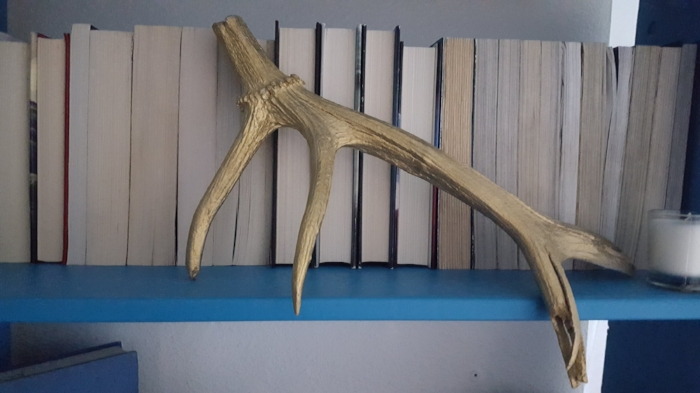 shed elk horn painted goldjpg