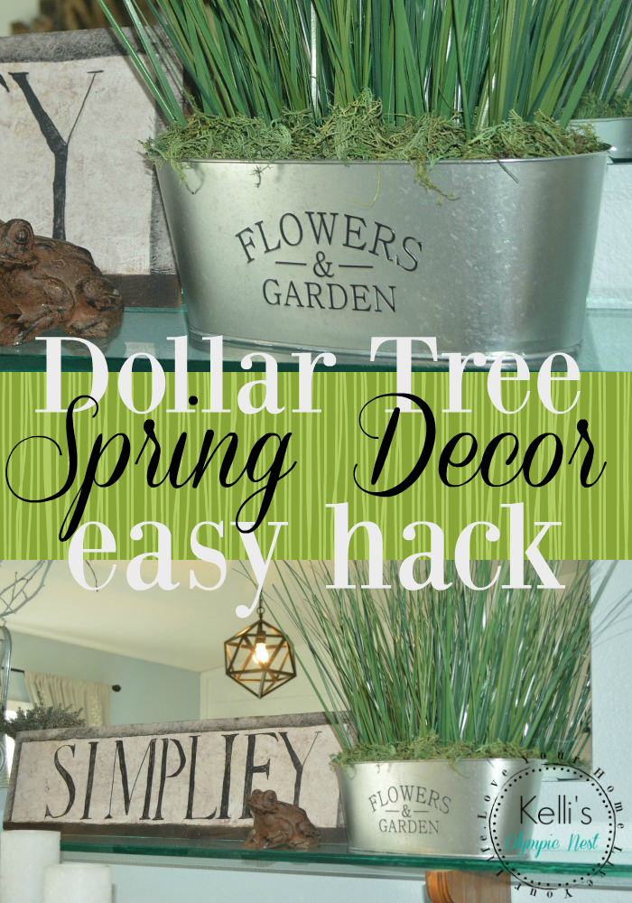 dollar tree farmhouse spring decor.png