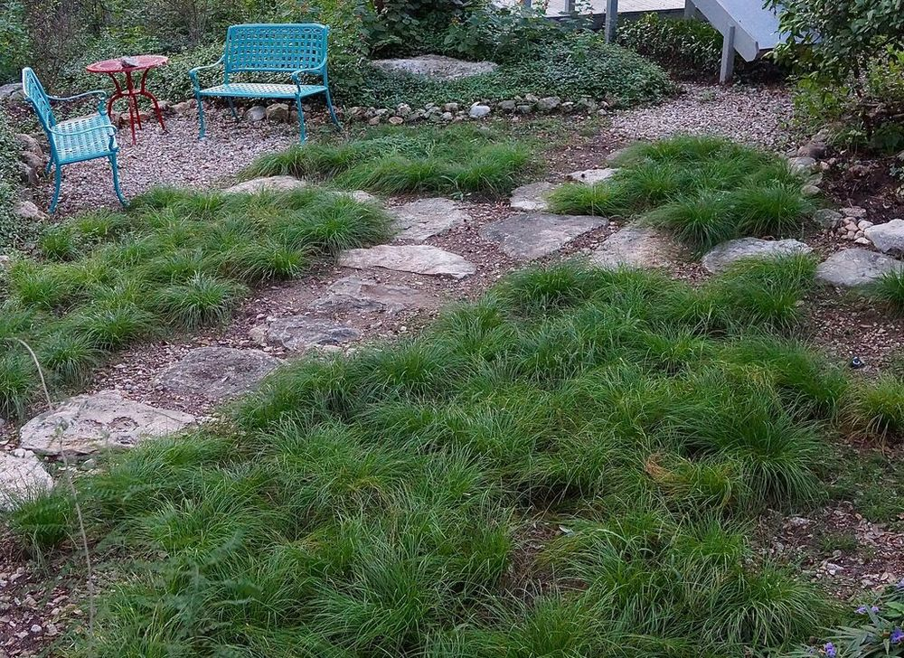 Above: Here's the same area of the yard – the AFTER photo – with new rock pathways and lovely, bushy sedge plantings. Mrs. Perkins said she loves her 'new yard.