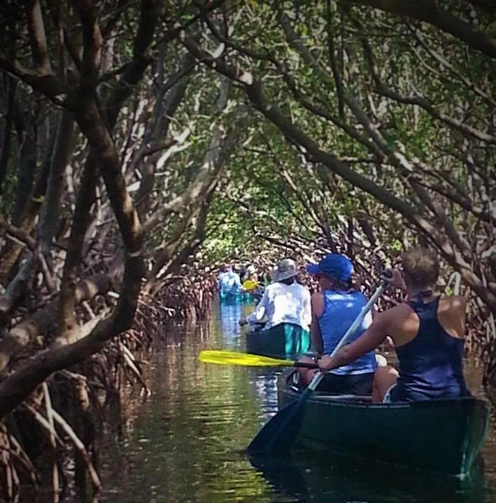 Canoeing in Weedon Island Preserve, St. Petersburg, FL