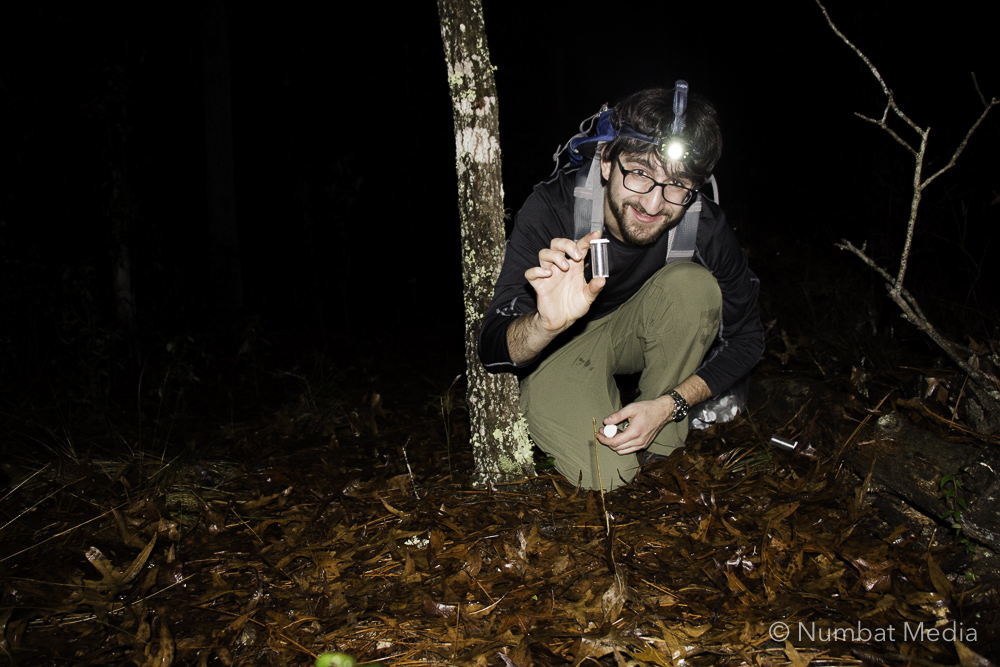 Tyler geekin' out about catching wolf spiders near Gainesville, FL for some of his labmates' research