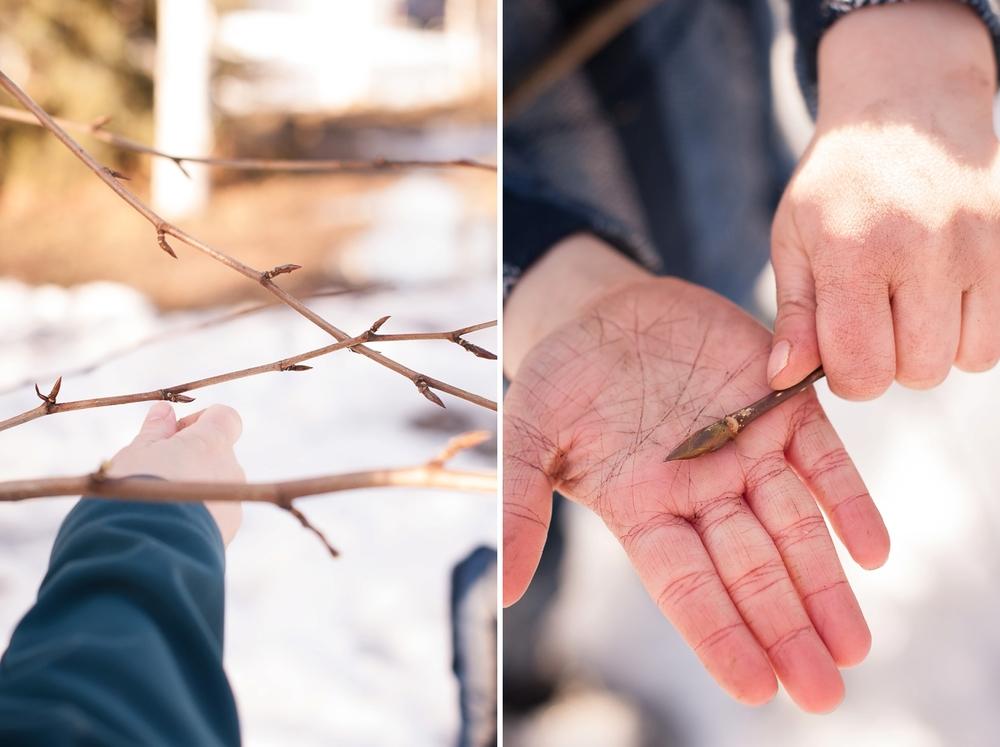 aem harvest blog_0012.jpg