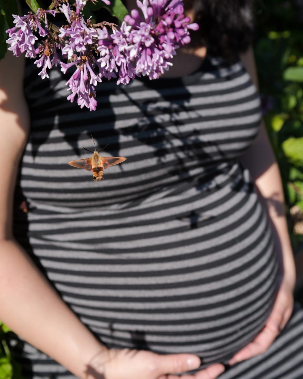 maternity portfolio_0019.jpg