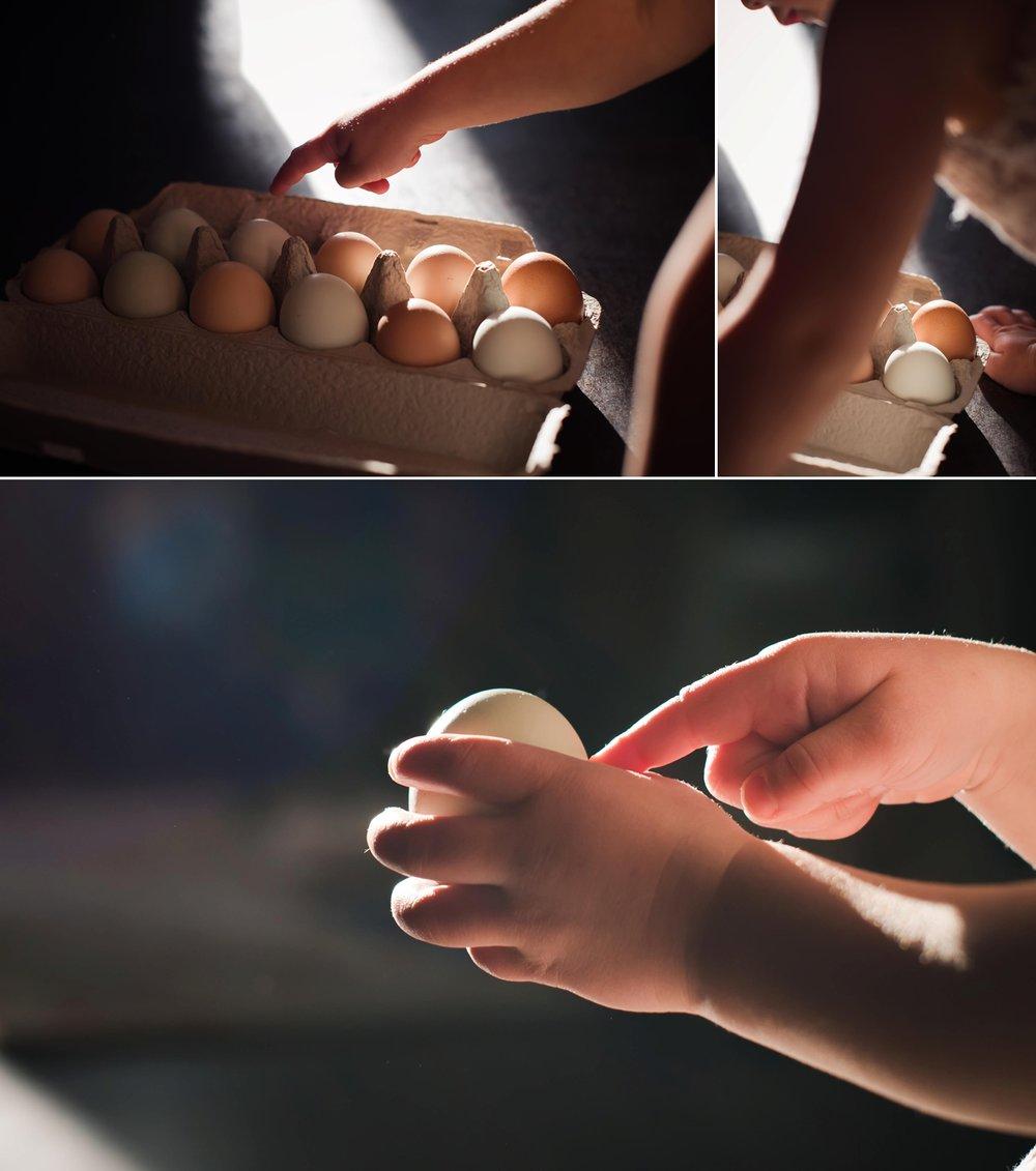 eggs_0001.jpg