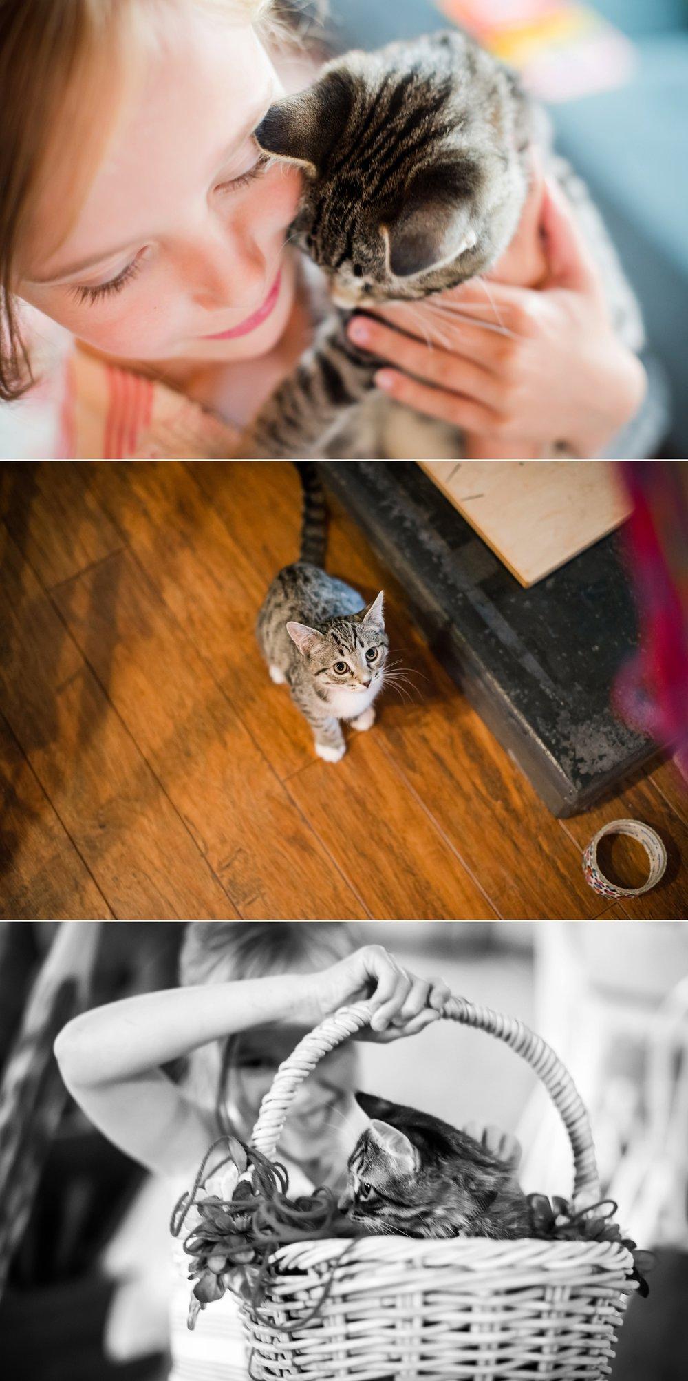 f48 animals_0003.jpg