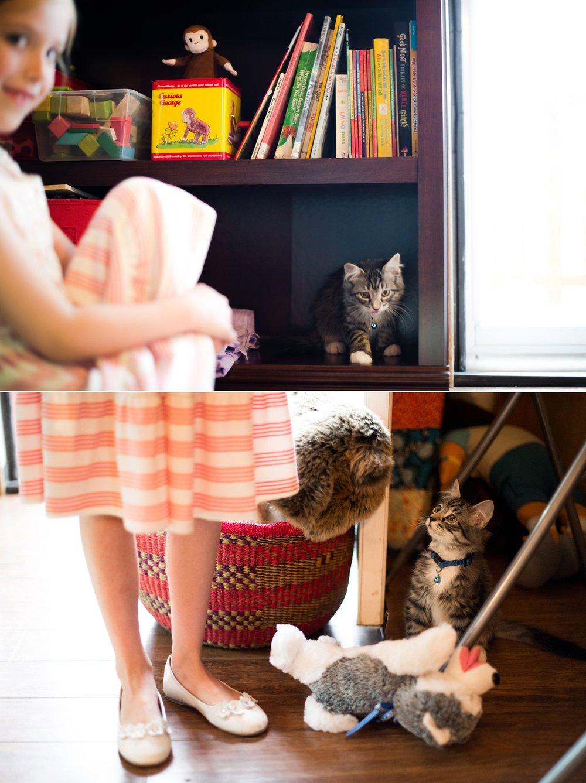 f48 animals_0005.jpg