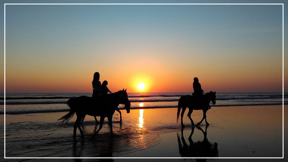horseriding-giliislands-lesvillasottalia