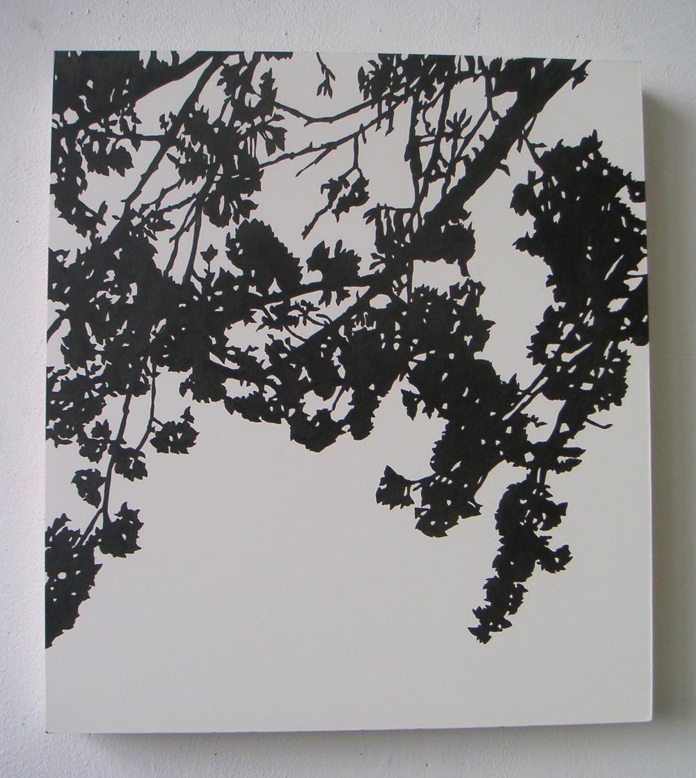 "Shogetsu (01),  2005 Pencil on clayboard panel 20"" x 16"" SOLD"