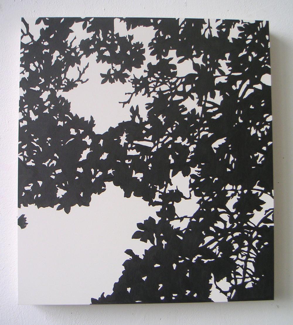"Shogetsu (04), 2005 Pencil on clayboard panel 20"" x 16"" SOLD"