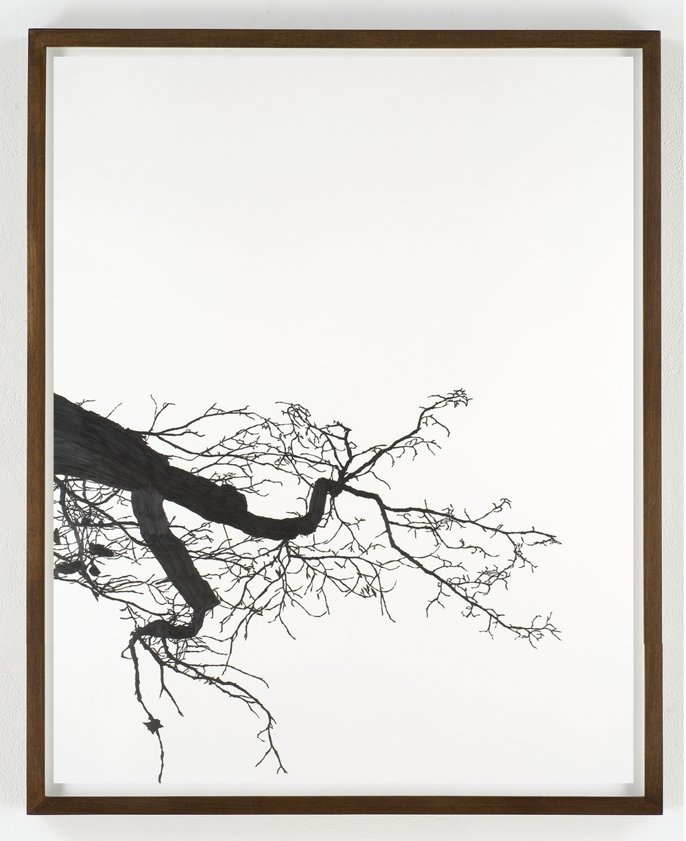 "Meghan Gerety, 2008 Pencil on watercolor paper 60"" x 40"" framed in dark walnut"