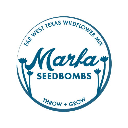 Marfa Seedbombs Brand Creation Packaging design and production