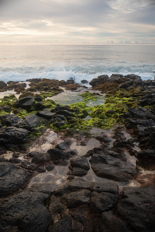 Hawaiian sunrise by Stephanie Ray Photography