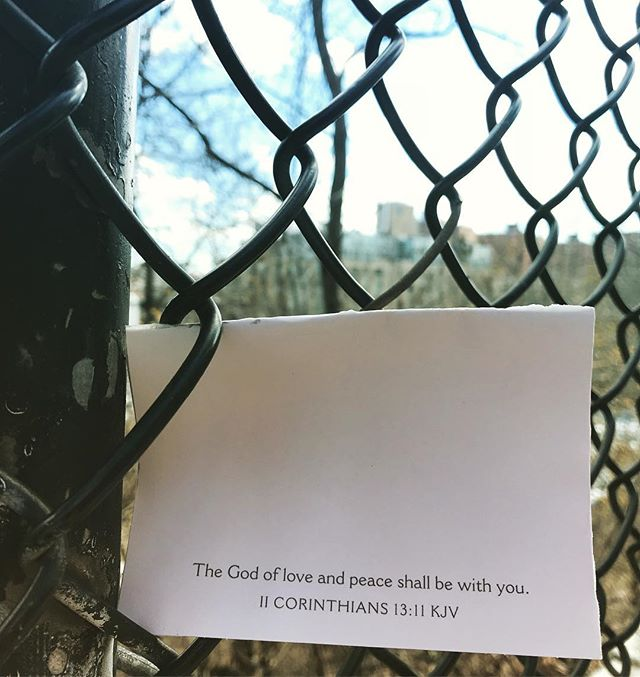 Sometimes the universe leaves a message in a chink in the fence. Listen!  #dogwalkdiscoveries