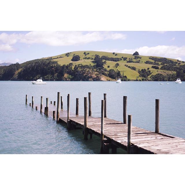 Went Kayaking today and burnt my legs. Akaroa is beautiful on a good day.
