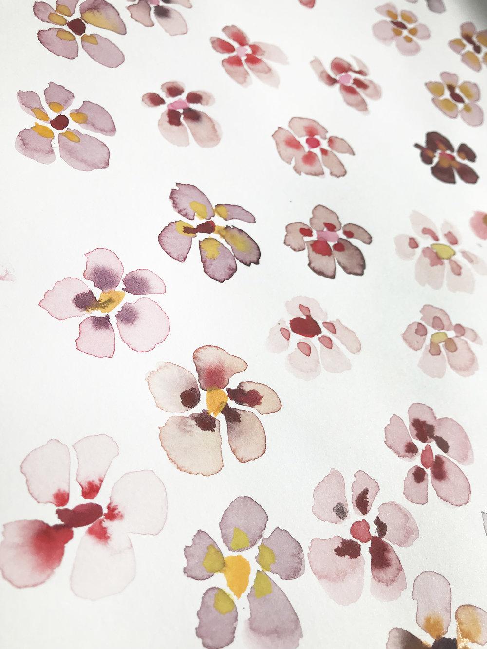 pia_angela_rasmussen_flower7.jpg