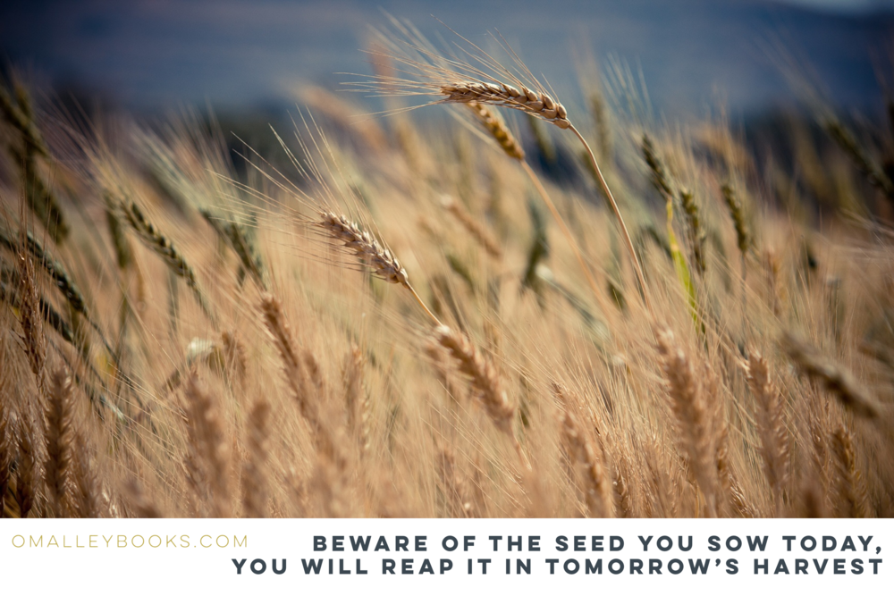 Beware of the seed you sow today, you will reap it in tomorrow's harvest. Galatians 6:7-8