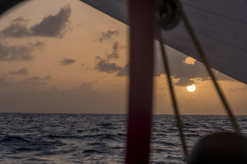 (Photo by Corinna Halloran / Team SCA / Volvo Ocean Race via Getty Images)