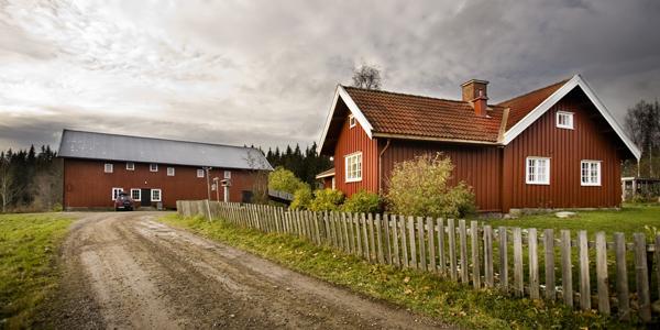 I Nordmarka finnes flere gamle hus og bygninger. Noen er spesielle rent bygningsteknisk og estetisk.