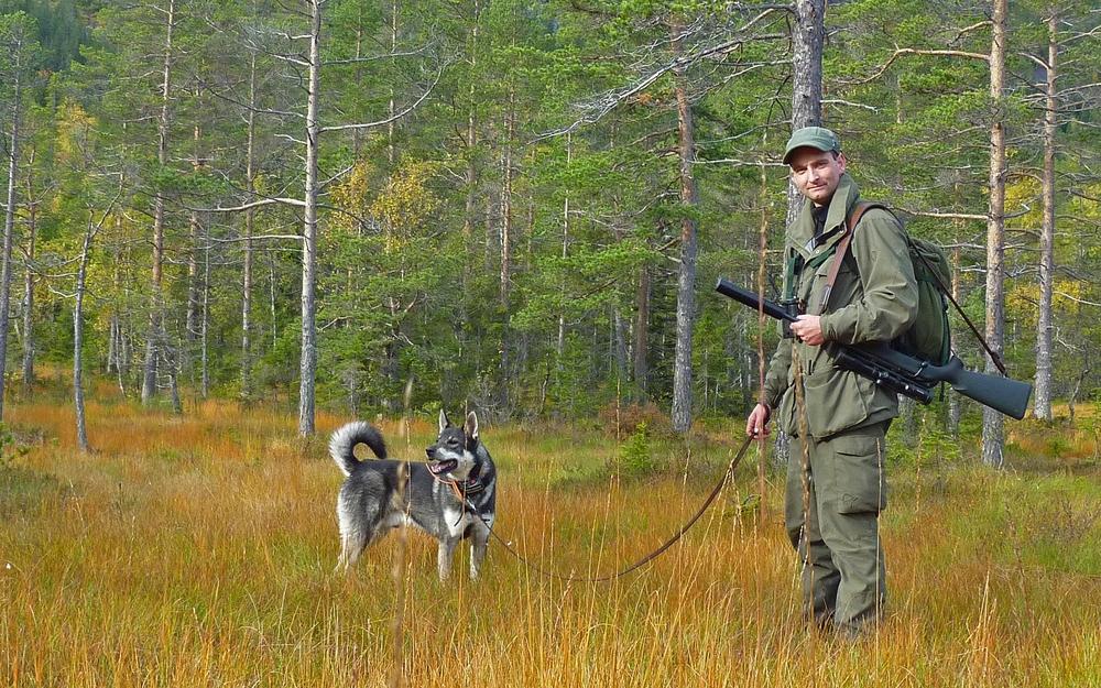 hund og jeger.jpg