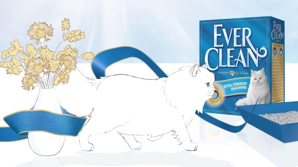 EverClean 1.jpg