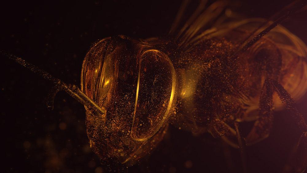 bees_006.jpg