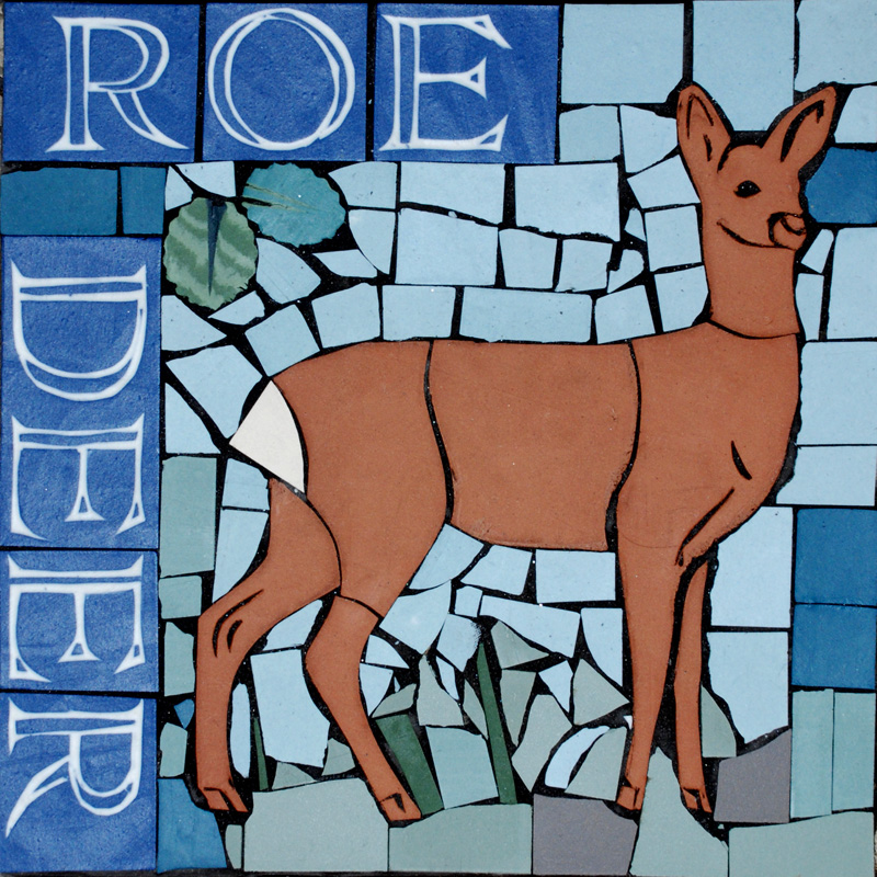 PS Roe deer.jpg