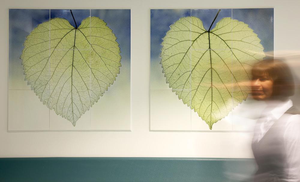 leaves murals.jpg