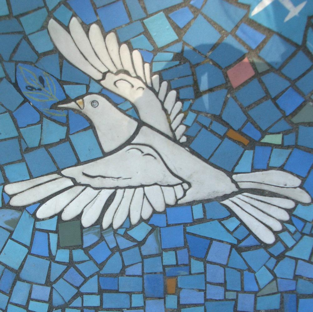 right dove.jpg