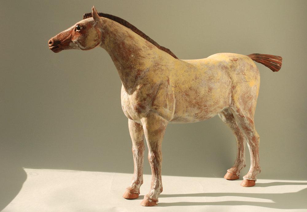 Horse 0907 Banner.jpg