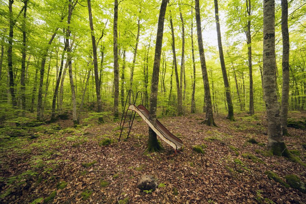 1-Nature First.jpg