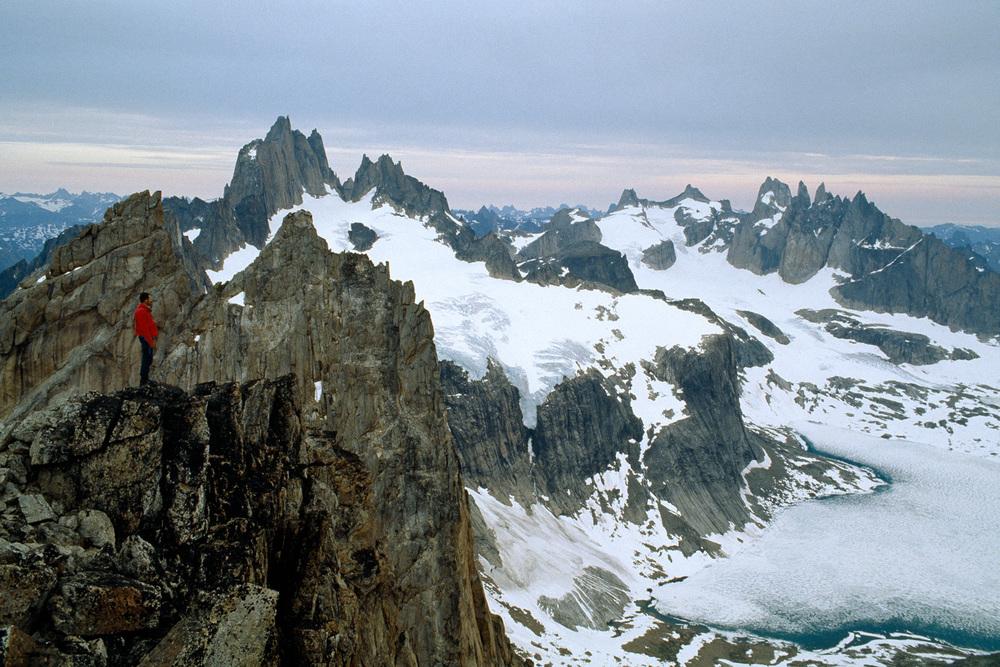 27.Groenlandia castelli.jpg