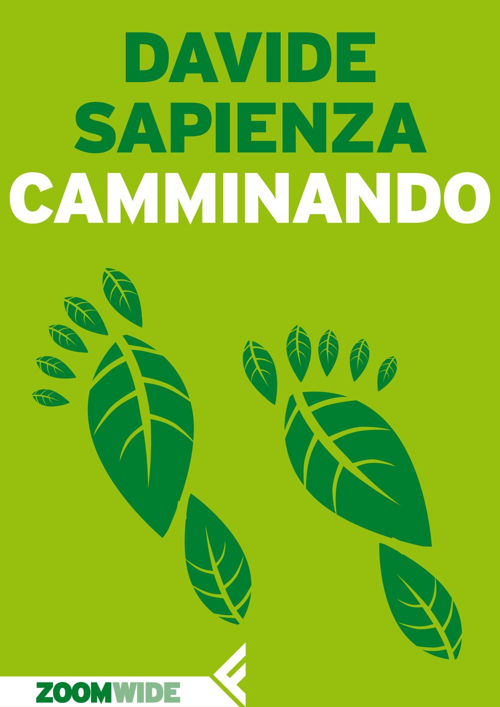 CAMMINANDO (Feltrinelli Zoom 2015) hi.jpg