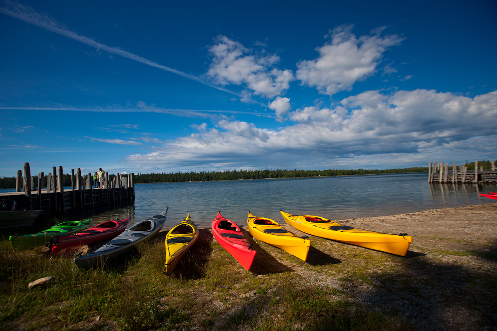 kayaks on shore.jpg