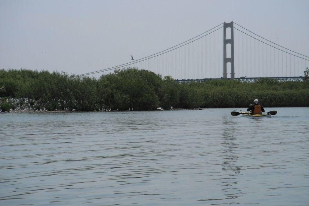 green island near bridge 2.jpg