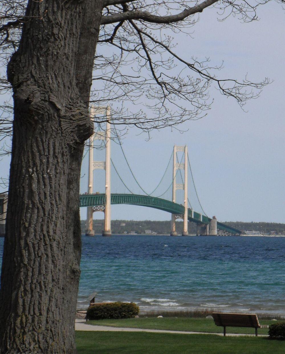 bridge land view.jpg