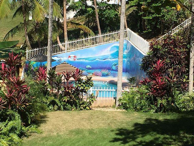 Pool side at oasis resorts! #surf #pool #poolside #oasis #oasisresort #tree #color #colorful #umbrella