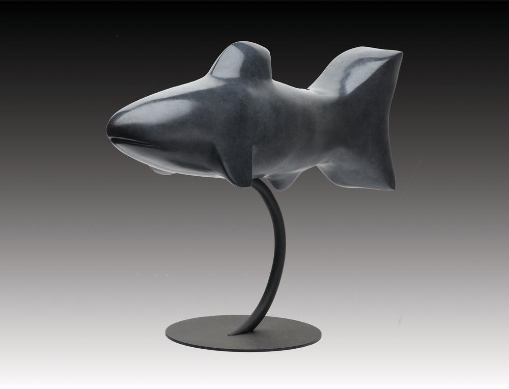 Shark II 16x20x8 Bronze.jpg