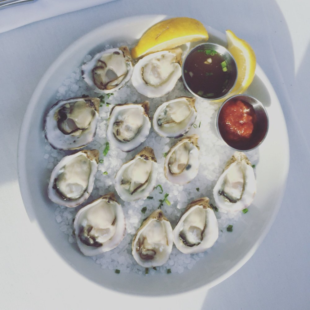 dolphin bay - oysters.jpg