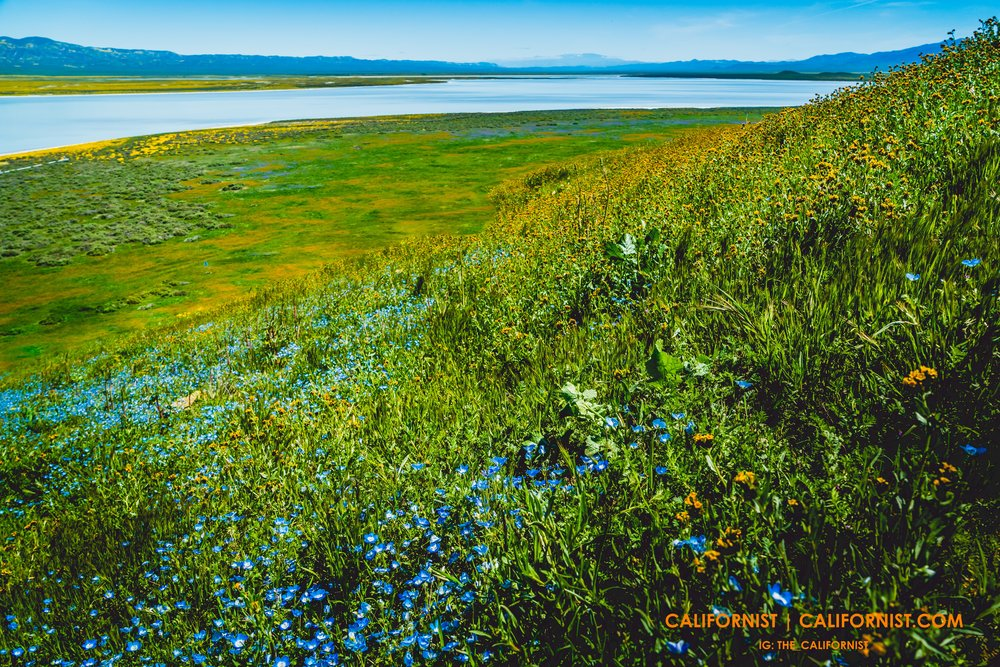 Soda Lake Overlook