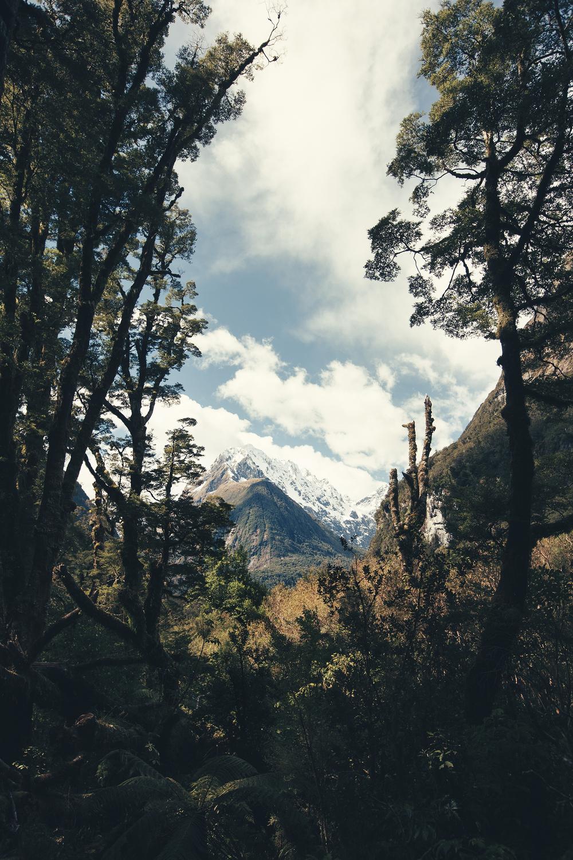Mountains exploring travel photos
