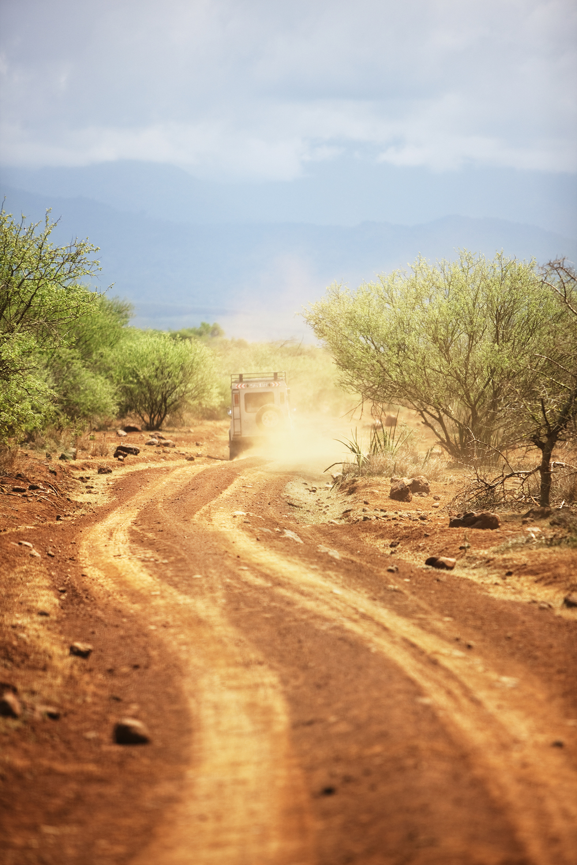 Safari Trail