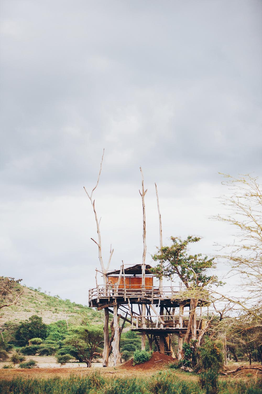 tree house africa travel exterior explore fuze reps