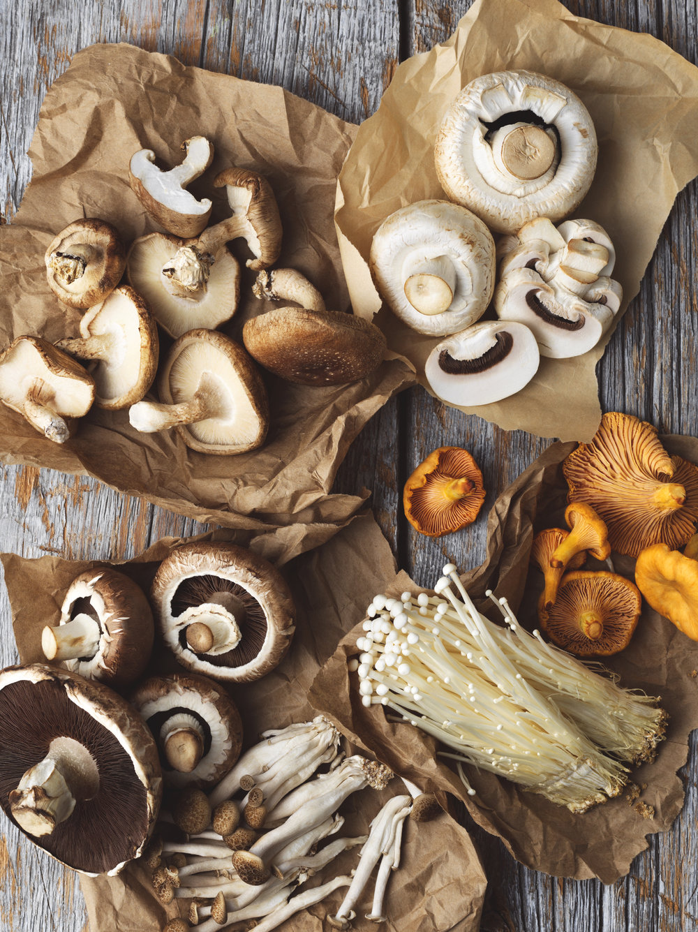 Mushroom Varieties best health magazine