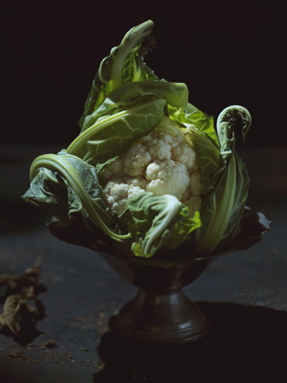 cauliflower still life art food photos