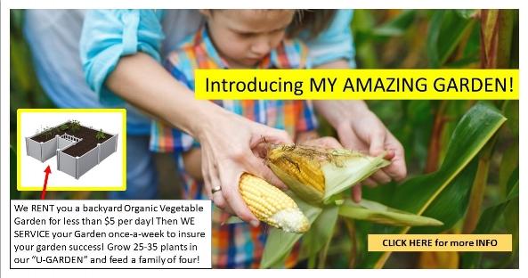 My Amazing Garden Banner Ad.jpg