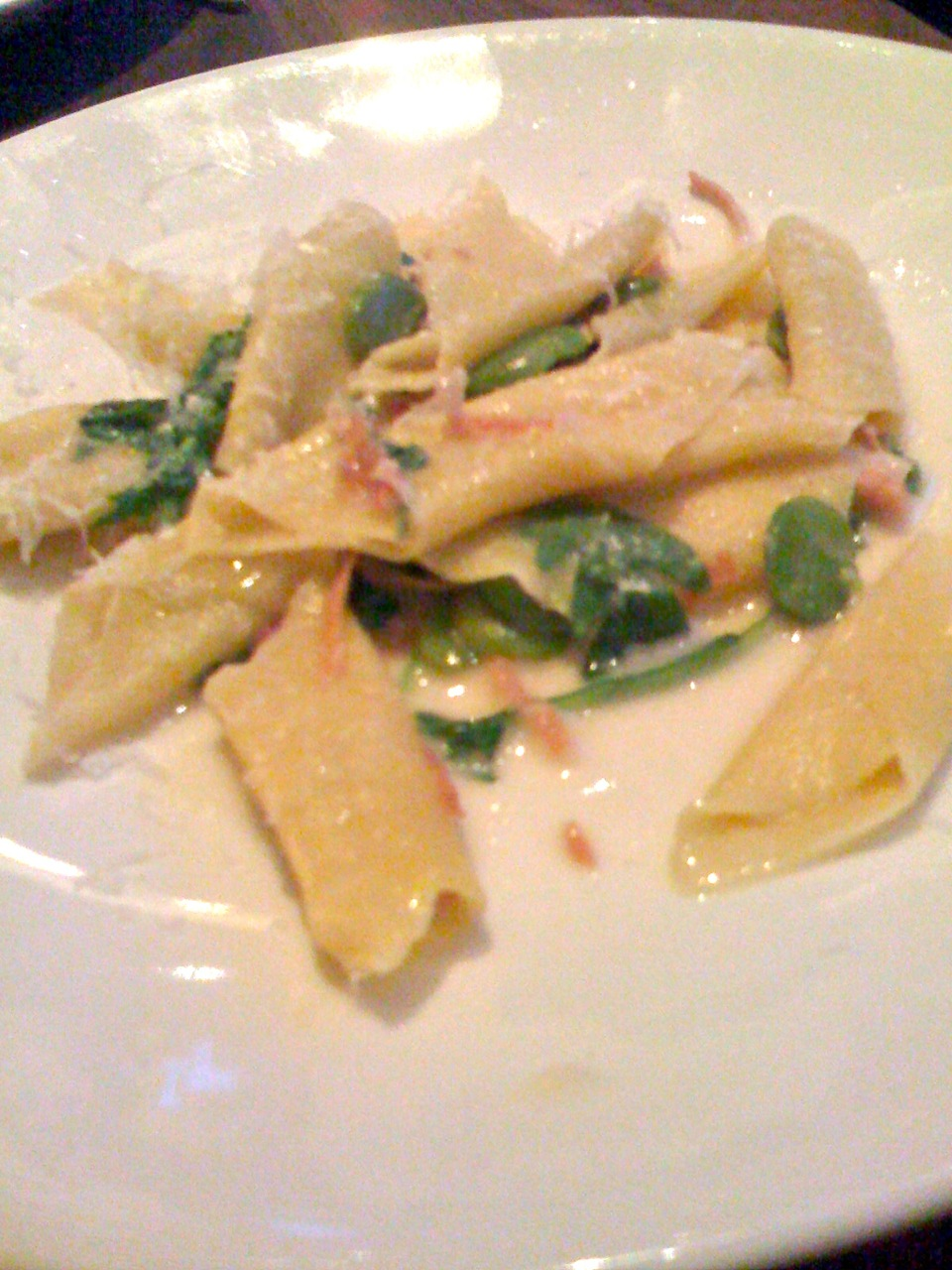 Garaganelli with Fava and Arugula