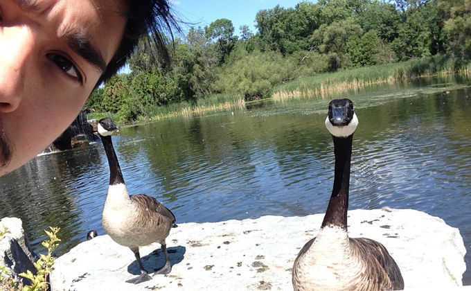 Close encounters at Green Bay's wildlife sanctuary in August 2014.