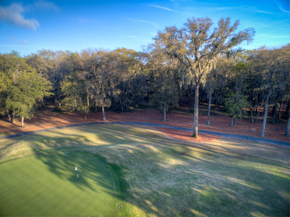 020 drone-3rd-green-view.jpg